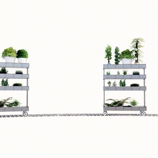 Claustra végétalisé